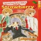 Nagatachou Strawberry
